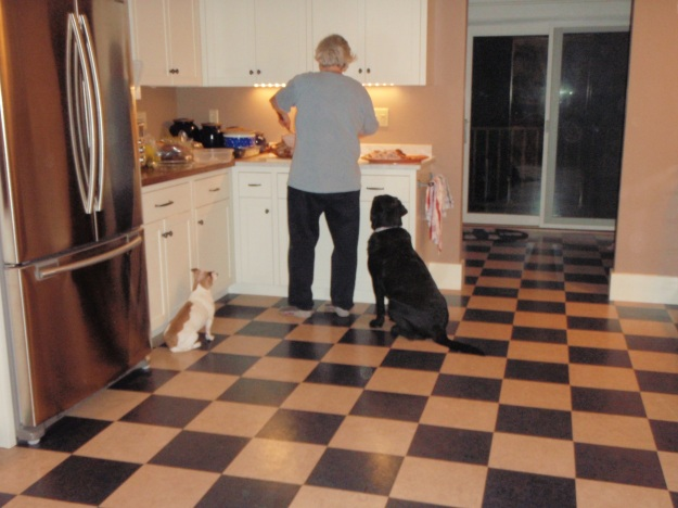 Cathleen and dogs